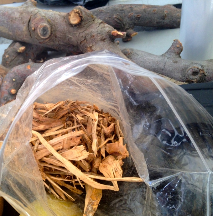 Apple Wood for smoking bacon and for your bbq