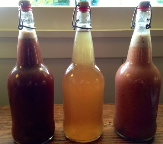 L to R: Strawberry Top Soda with Herb Stems; Lemon Kombucha; Pluot Bay Leaf Soda