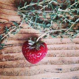 Fresh strawberries!