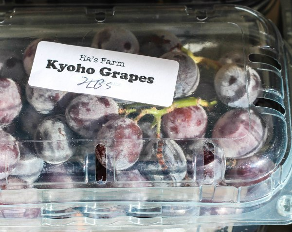 Kyoho Grapes (1 of 1)