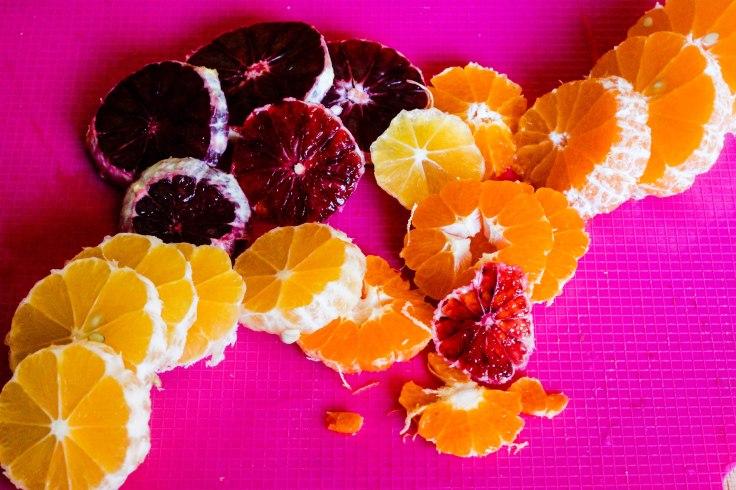 citrus salad (8 of 50)