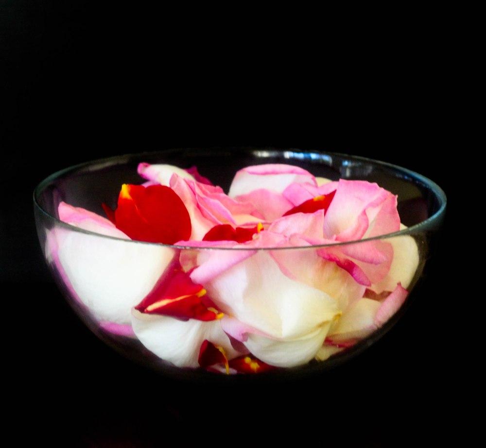 rose petals (9 of 21)